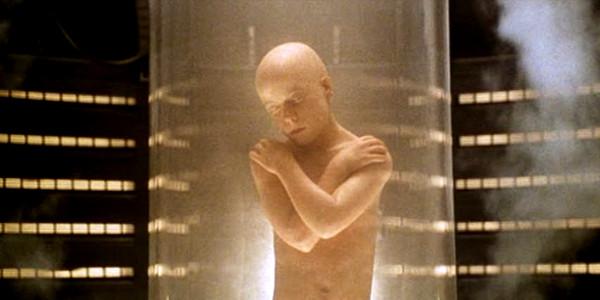 Bald Ripley