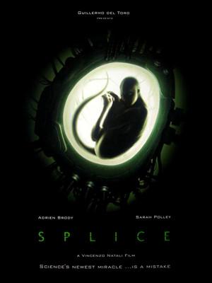 Splice in vitro