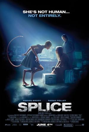 Splice - Dren