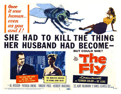 The Fly sheet